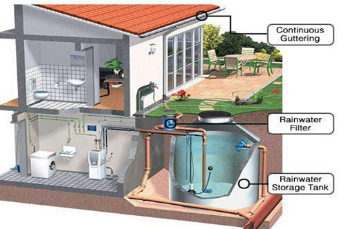 An Illustrated Look At How To Harvest Rainwater