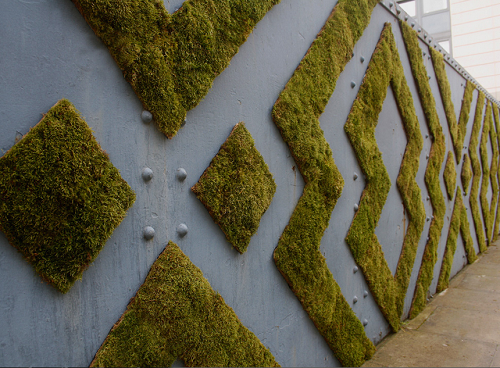 Graffitti art made of moss