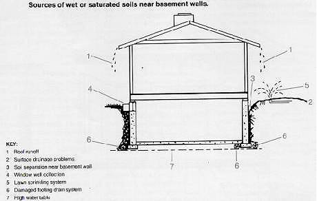Wet Or Saturated Soil Near Basement Walls Can Haveseveral Causes: Improper  Disposal Of Roof Water Runoff,poor Surface Drainage Away From The House, ...