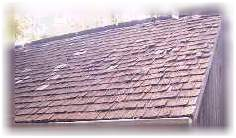 wood roofs