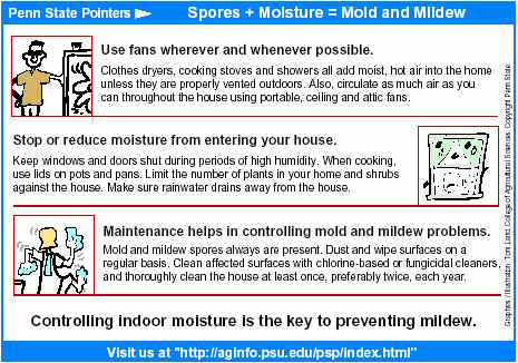 Adams Says The Causes Of Most Mildew Problems Are Not Difficult To Understand Or Solve Air Can Absorb Moisture It S Like A Sponge She